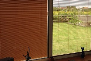 Blinds that fit between glass panes with natural brown tint